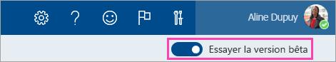 Capture d'écran du bouton bascule d'aperçu activé