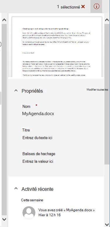 Volet de détails pour un seul fichier sélectionné.