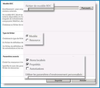 Capture d'écran du Modèle BCS.