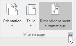 Capture d'écran de la barre d'outils des pages avec sélection de Dimensionnement automatique