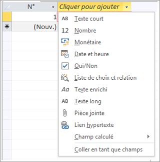 Partie d'un écran montrant la liste déroulante des types de données Cliquer pour ajouter