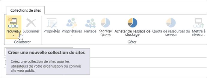 Page Collection de sites avec l'option Nouveau sélectionnée