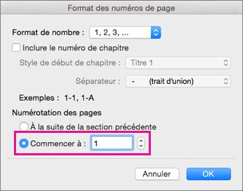 Dans la boîte de dialogue Format des numéros de page, Commencer à = 1.