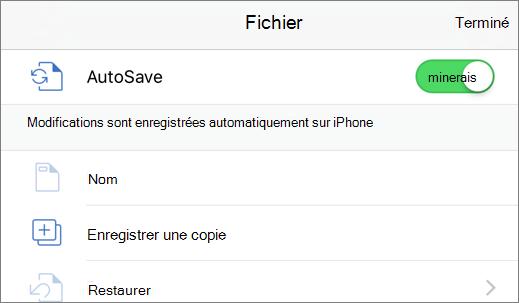 Appuyez sur Fichier, puis sur Dupliquer pour enregistrer un document avec un autre nom