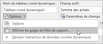 Option Afficher les pages Filtre du rapport