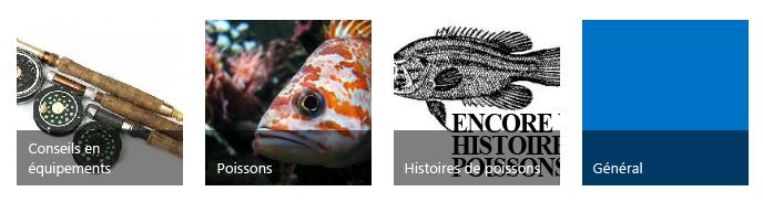 Quatre mosaïques de catégorie, chacune avec une image et un titre accrocheur