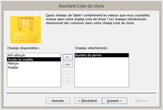 Partie d'un écran montrant l'Assistant Liste de choix