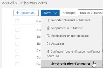 Dans le menu Autres, sélectionnez Synchronisation d'annuaires