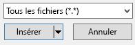 Le filtre de type de fichier dans la boîte de dialogue Insérer une vidéo propose l'option «tous les fichiers».