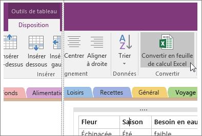 Capture d'écran du bouton Convertir en feuille de calcul Excel dans OneNote2016