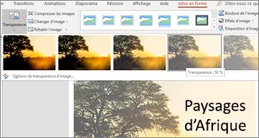 Diapositive avec options de transparence sous l'onglet Format