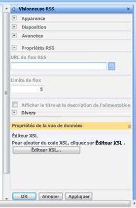 Volet d'outils de la visionneuse RSS