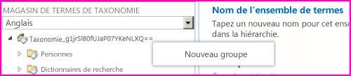 Capture d'écran du volet de navigation dans l'outil de gestion du magasin de termes, avec l'élément de menu Nouveau groupe sélectionné.