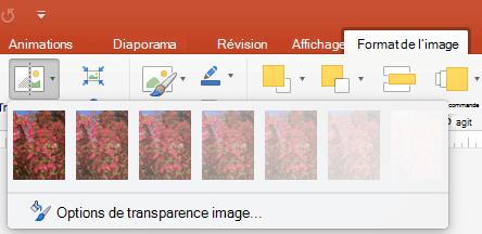Prédéfinir des options de transparence d'image