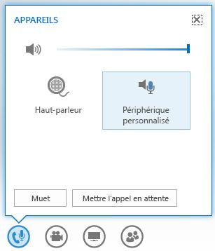 Capture d'écran des options qui s'affichent lorsque vous pointez sur le bouton Audio