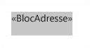 Champ Bloc d'adresse sélectionné