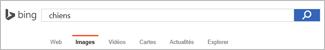 Requête saisie dans la zone recherche Bing images