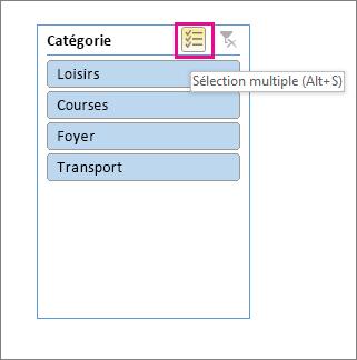 Choix de segments avec le bouton Sélection multiple mis en évidence