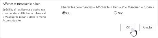 Option Afficher/masquer le ruban, avec l'option OK sélectionnée
