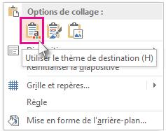 Options de collage: Utiliser le thème de destination
