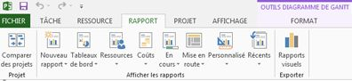 Onglet Rapport dans Project 2013