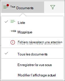 Fichiers nécessitant une attention sous le menu Options d'affichage