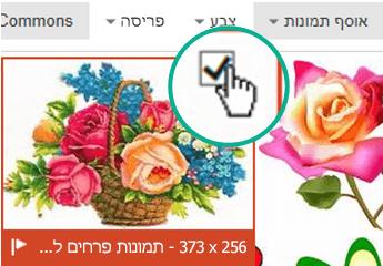 בחר את התמונה הממוזערת של התמונה שברצונך להוסיף. סימן ביקורת מופיע בפינה הימנית העליונה.