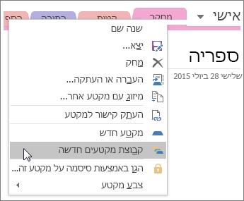 צילום מסך של אופן היצירה של קבוצת מקטע חדשה ב- OneNote 2016.