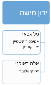 לפני: תרשים ארגוני קיים