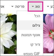תפריט 'סוג' שבו האפשרות 'תמונה' נבחרה