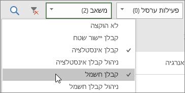 צילום מסך של הרשימה הנפתחת לסינון משאבים בלוח הפעילויות עם שני משאבים שנבחרו
