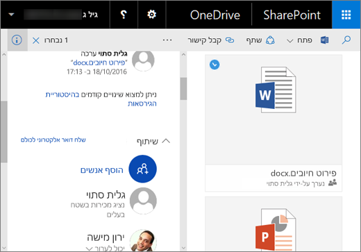 צילום מסך של החלונית 'פרטים' ב- OneDrive for Business ב- SharePoint Server 2016 עם Feature Pack 1