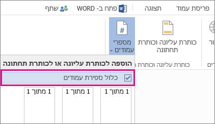 תמונה של תיבת הסימון שיש לבחור כדי לכלול את ספירת העמודים עם מספרי העמודים במסמך (עמוד X מתוך Y).