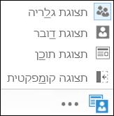 צילום מסך של בחירת תצוגה לאחר הבחירה ב'תצוגת גלריה'