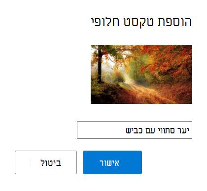 הוסף טקסט חלופי לתמונות שלך ב- Outlook.