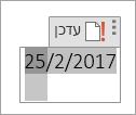 עריכה או עדכון של שדה תאריך