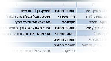 טבלת Excel של נתונים מיובאים