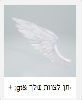 דגם תלת-ממד כנף