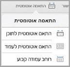 אפשרויות התאמה אוטומטית של iPad