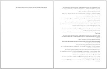 מסמך בעל שני עמודים עם משפט אחד בלבד בעמוד השני