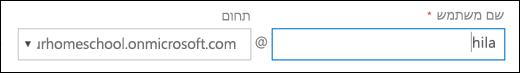 צילום מסך של הוספת משתמש ב- Office 365, המציגה את השדות שם משתמש ותחום.