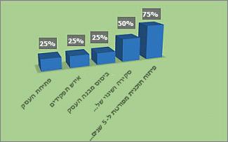 תרשים '% ביצוע' מעוצב בדוח 'מבט כולל של פרוייקט'