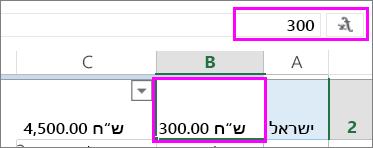 תצוגה של ערך מספר בשורת הנוסחאות