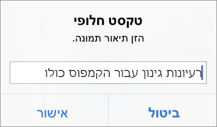 תפריט 'טקסט חלופי עבור תמונה' ב- Outlook עבור iOS