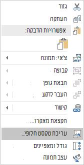 תפריט Win32 Excel עריכת טקסט חלופי עבור תמונות
