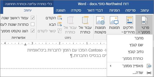 אפשרויות 'פרטי מסמך' מוצגות בכרטיסיה 'כלי כותרת עליונה וכותרת תחתונה'.