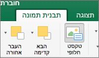 לחצן ' טקסט חלופי ' עבור תמונות ברצועת הכלים ב-Excel עבור Mac