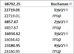 PivotTable בצורה דחוסה