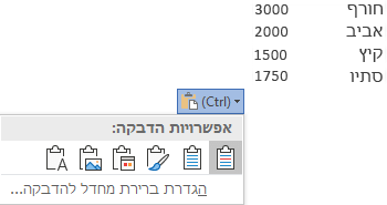 לחצן אפשרויות הדבקה, לצד נתונים מסוימים של Excel, מורחב כדי להציג את האפשרויות