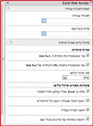בחר והזן מאפיינים עבור ה- Web Part של Excel Web Access בחלונית הכלים.
